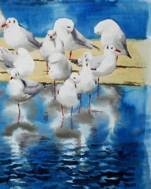 BenWoodhams_maager-seagulls-akvarel-watercolour_small.jpg