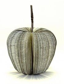 Upcyclers-apples-5_small.jpg