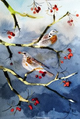Ben_Woodhams_-Fieldfare.3-Sjagger_3_Bornholm_akvarel-watercolour_small.jpg