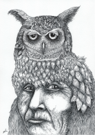 indian-owl-a5.png