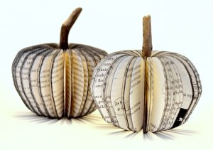 Upcyclers-apples-8_small.jpg
