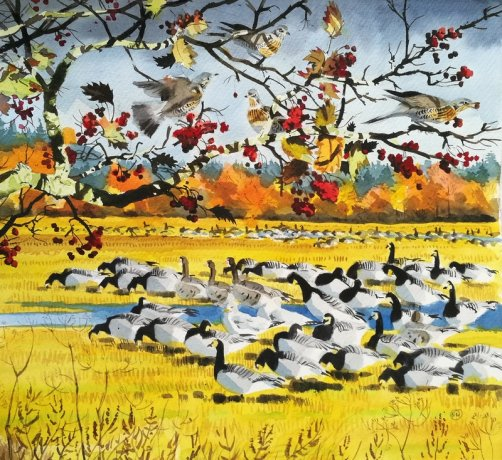 Ben_Woodhams_aAutumn_Geese_Bornholm_akvarel-watercolour_small.jpg